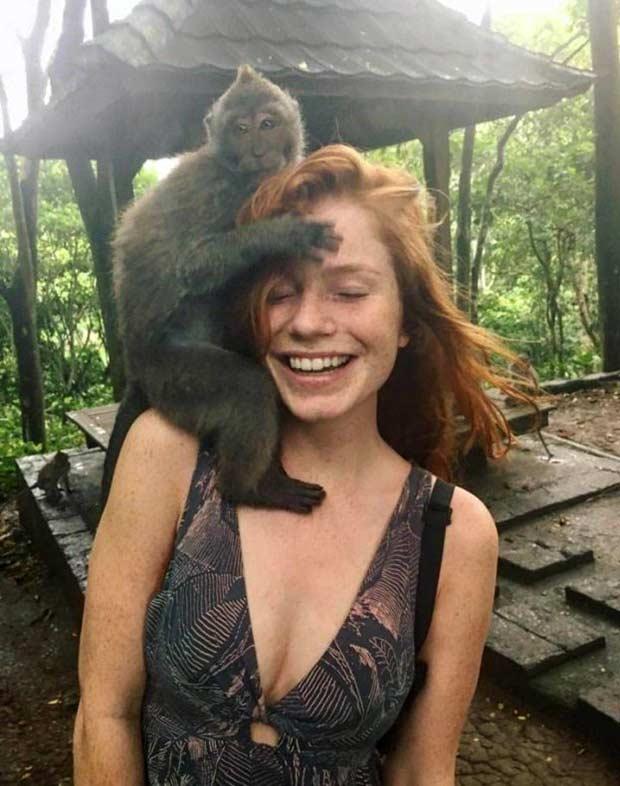 funny-pics-monkey-girls-head-ginger.jpg
